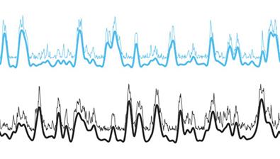 Neuronal electric fields